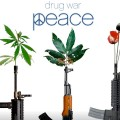 Drug War Peace